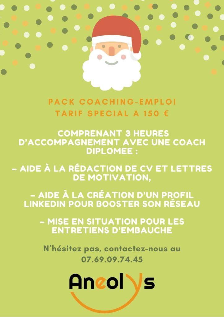 Pack coaching professionnel pour l'emploi